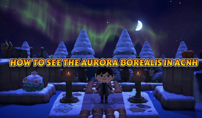 HOW TO SEE THE AURORA BOREALIS IN ACNH